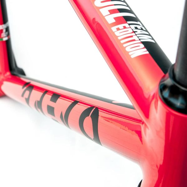 biciclette personalizzate