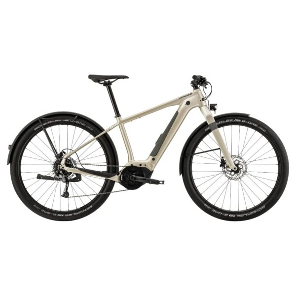 CANNONDALE Canvas Neo 2 2021 - Champagne