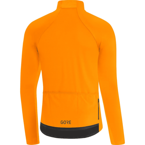 Gore_C5_thermo_jersey_rear.
